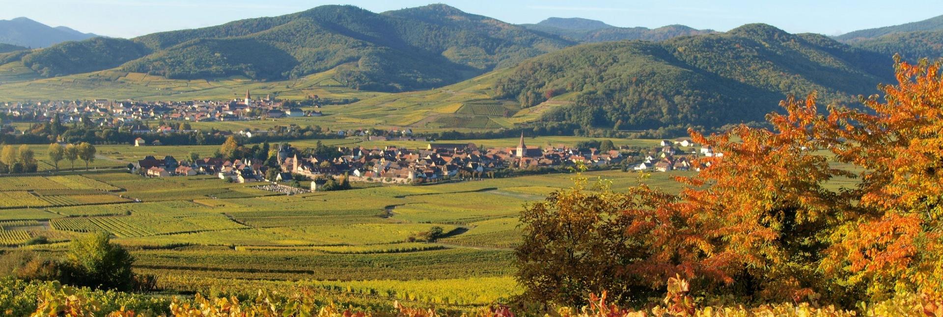 Village de Kientzheim